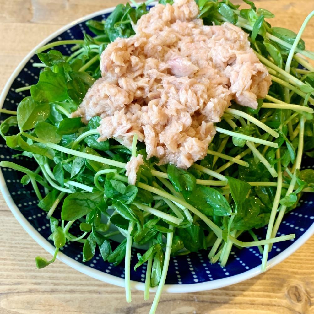 豆苗とツナの2分で完成するサラダ